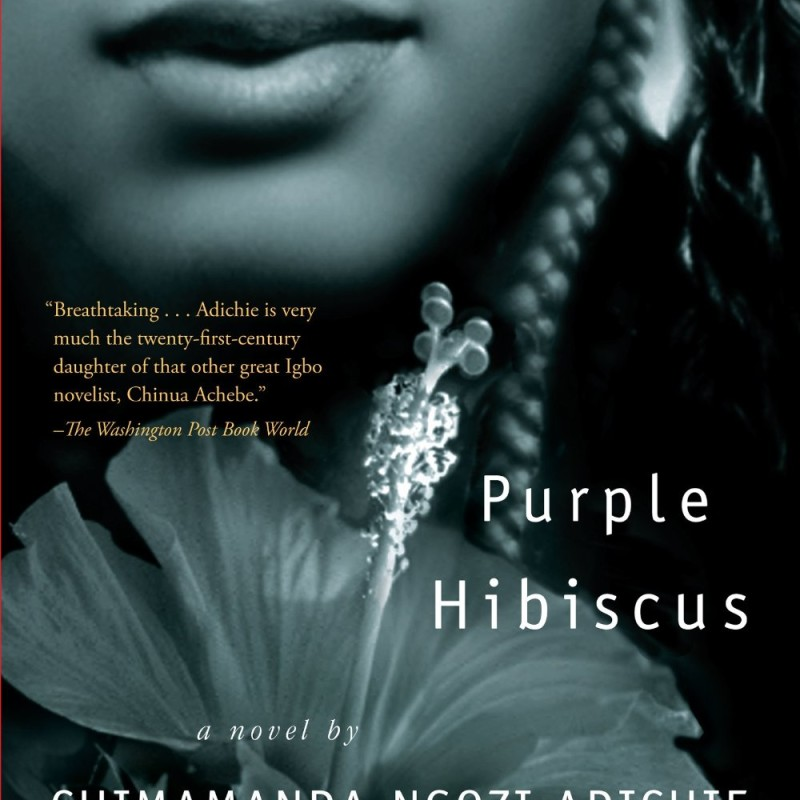 purple hibiscus relationship essay kambili and ifeoma Purple hibiscus explores these questions easily and honestly, providing a backdrop for kambili, our protagonist, to discover these things for herself although her coming-of-age is not the grandiose gesture the reader hopes for, what she gains is the understanding that silence can play the role of both a negative defeat, and a weapon of.